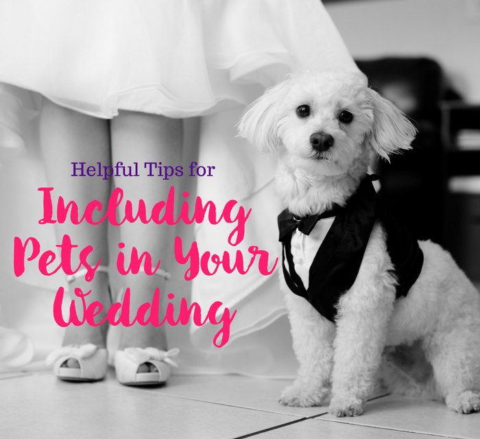 Helpful Tips for Including Pets in Your Wedding